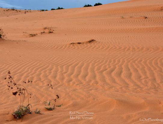 Sand Dunes at Mui Ne - Vietnam