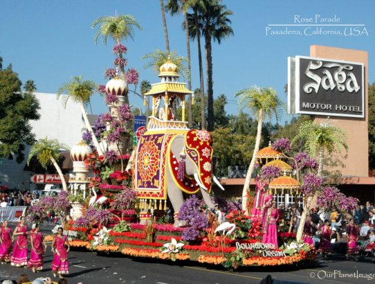 Rose Parade - California