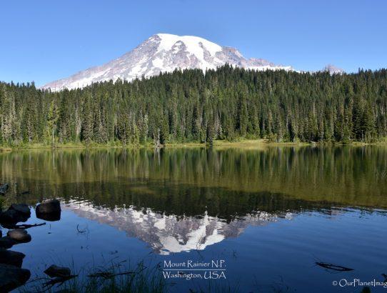 Mount Rainier National Park - Washington