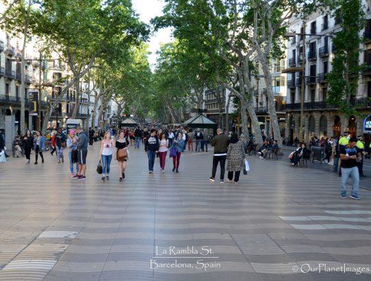La Rambla Street - Spain