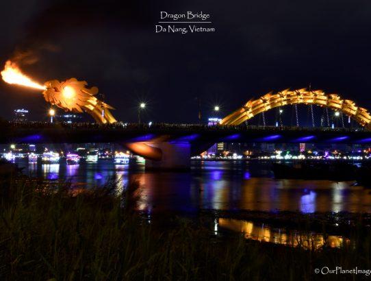 Dragon Bridge - Vietnam