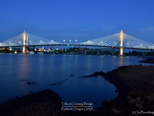 Tilikum Crossing Bridge - Oregon