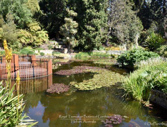 Royal Tasmanian Botanical Gardens - Australia