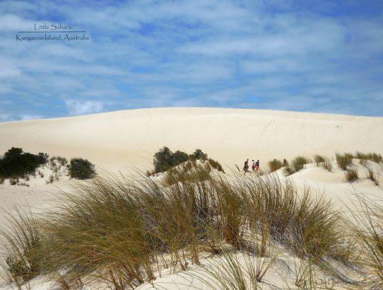 Little Sahara - Australia