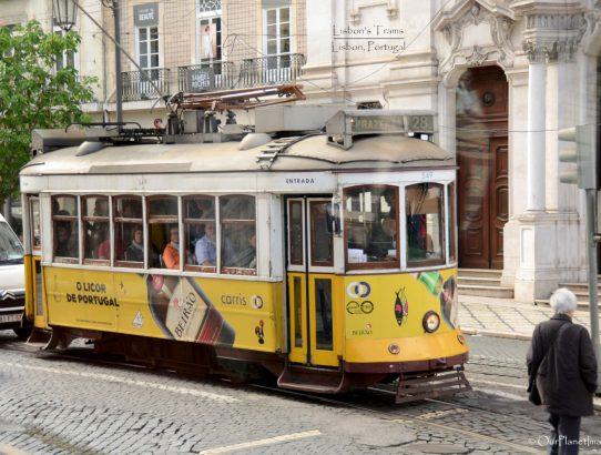 Lisbon's Trams - Portugal