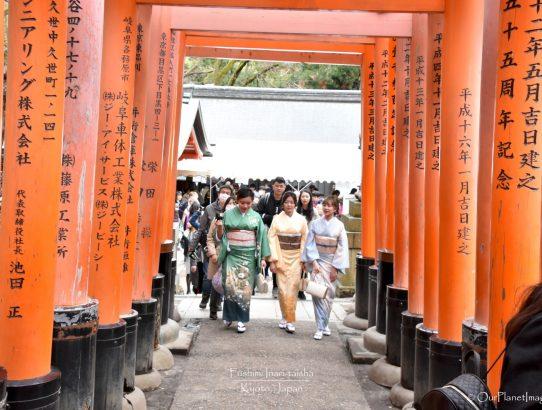 Fushimi Inari-taisha - Japan
