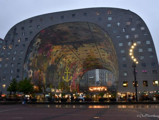 Market Hall - Netherlands
