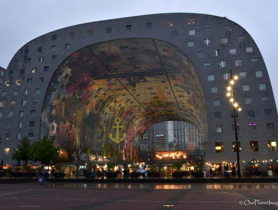 Market Hall - Netherlands