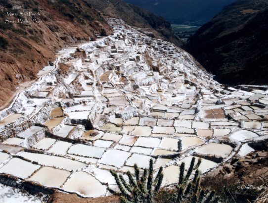 Marsa Salt Ponds - Peru