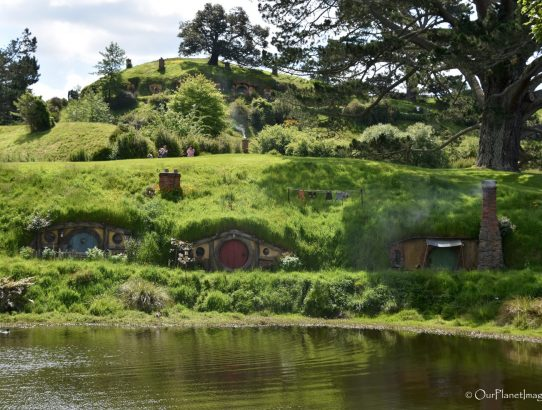 Hobbiton Movie Set - New Zealand